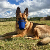 n95 mask for dog