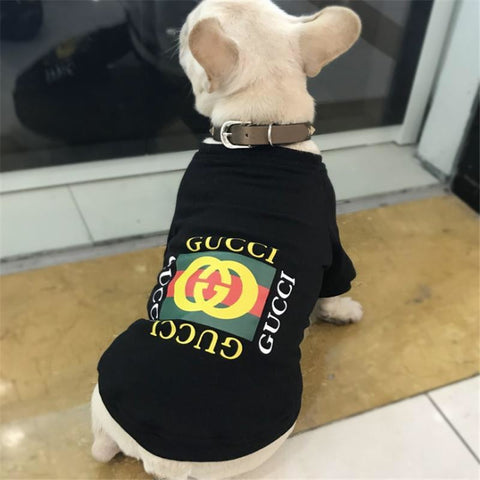 gucci dog