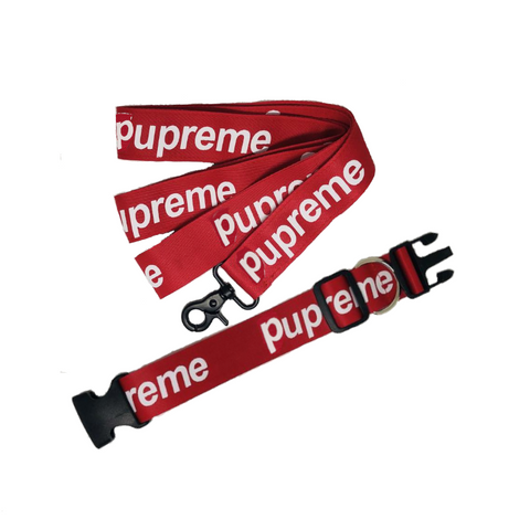 Pupreme Collar & Leash Set
