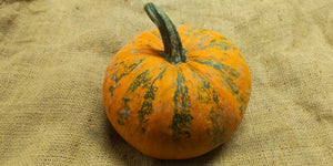 Emerald Naked Seeded Pumpkin