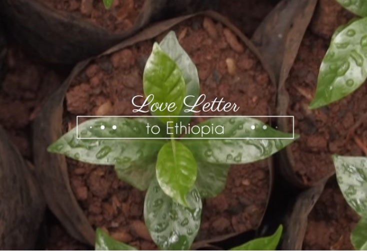 Love Letter to Ethiopia