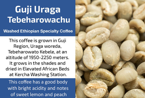 Guji Uraga Gr2 - Unroasted Washed Ethiopia Coffee