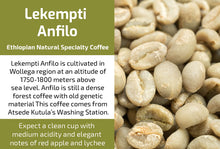 Load image into Gallery viewer, Ethiopian Lekempti Anfilo - Unroasted Natural Coffee
