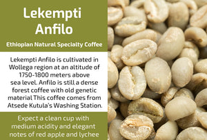Lekempti Anfilo Gr2 - Unroasted Natural Ethiopian Coffee