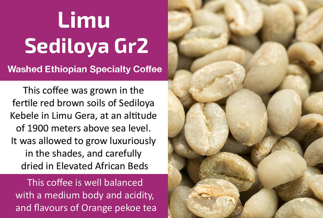 Limu Gera Sediloya Gr2 - Washed Ethiopian Coffee (Unroasted)