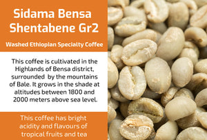 Sidama Bensa Shentabene Gr2 - Unroasted Washed Ethiopia Coffee