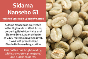 Sidama Nansebo Gr1 - Unroasted Washed Ethiopia Coffee