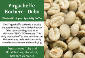 Yirgacheffe Kochore Debo Gr2 - Unroasted Washed Ethiopia Coffee