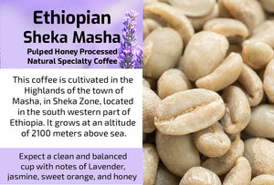 Ethiopian Sheka Masha G1 - Unroasted Pulped Honey Processed Natural Coffee