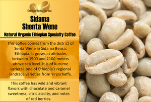 Ethiopian Sidama Shenta Wene  - Golden Bean Series - Unroasted Natural Coffee