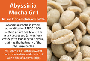 Ethiopian Abyssinia Mocha - Unroasted Natural Coffee
