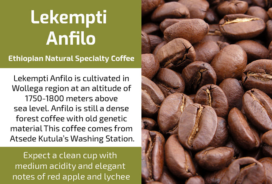 Lekempti Anfilo Natural G2 (Medium Roast)