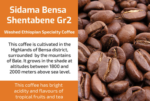 Sidama Bensa Shentabene Gr2 - Washed Ethiopia Coffee (Medium Roast)