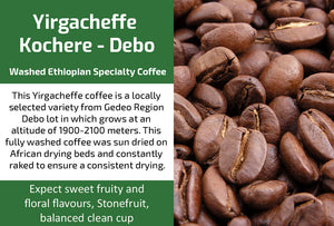 Yirgacheffe Kochore Debo Gr2 - Washed Ethiopia Coffee (Medium Roast)