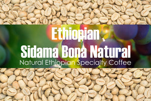 Ethiopian Sidama Bona - Unroasted Natural Coffee