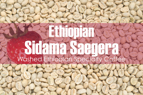 Ethiopian Sidama Saegera - Unroasted Washed Coffee