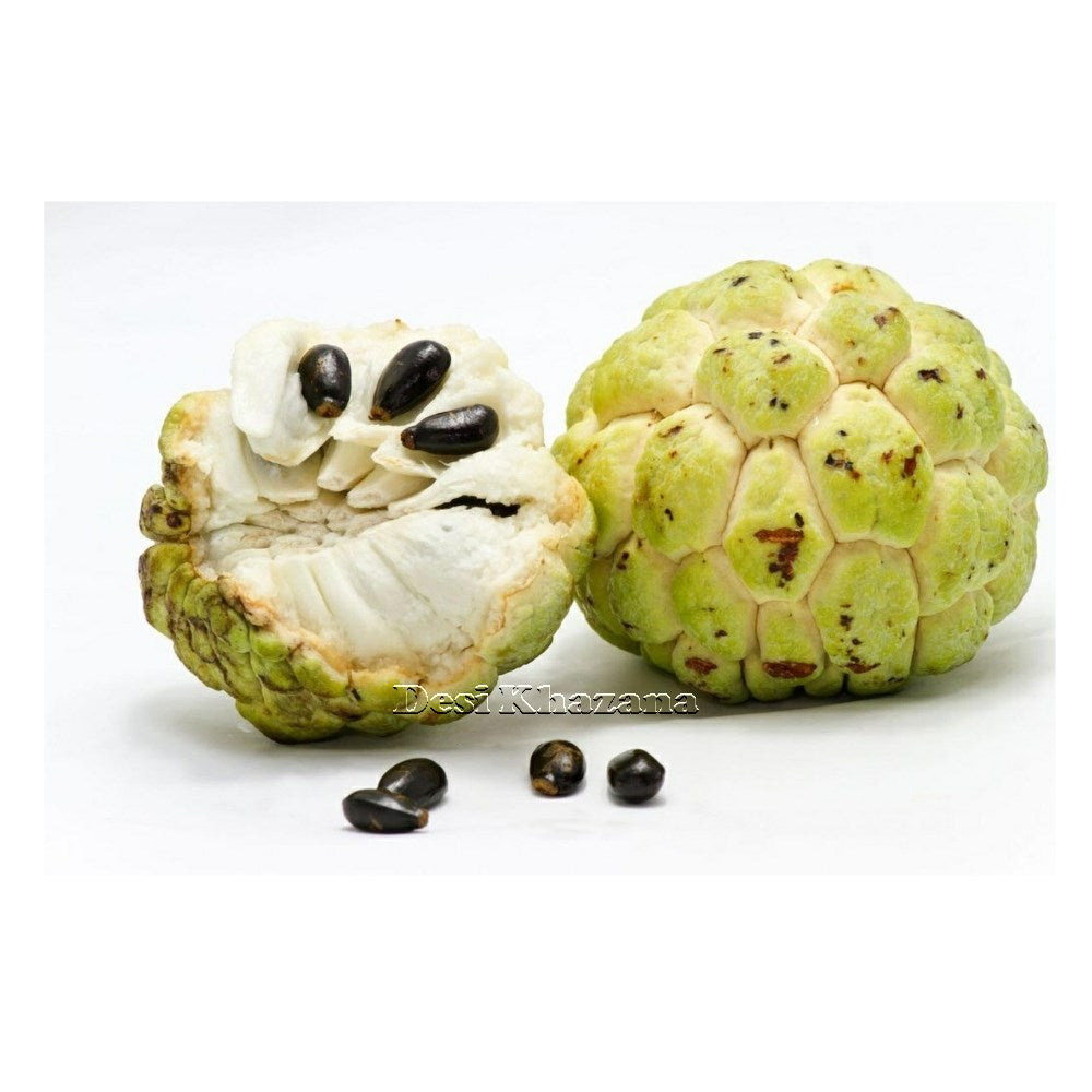 Custard Apple Sitaphal Desi Khazana Fresh Fruits