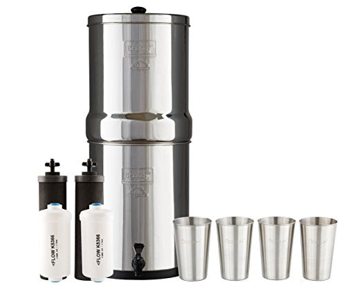Water Filter System w/ 2 Black Purifier Filters (3 Gallons)