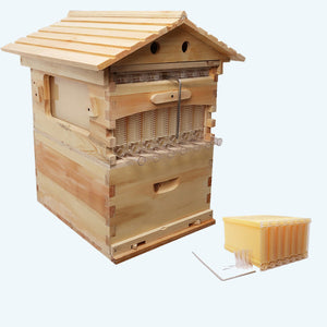 Automatic Wooden Beehive House For 7 Beehive Frames
