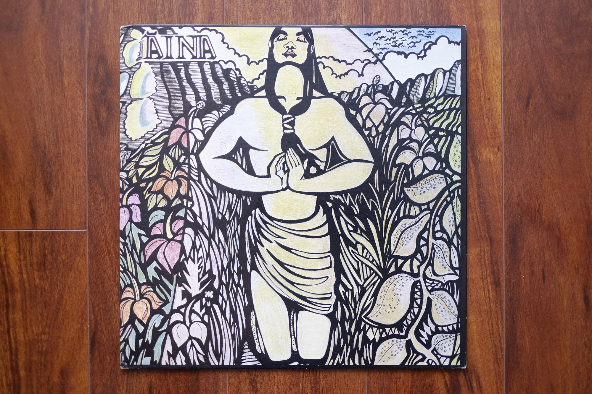 Aina-Lead-Me-To-The-Garden-LP-cover