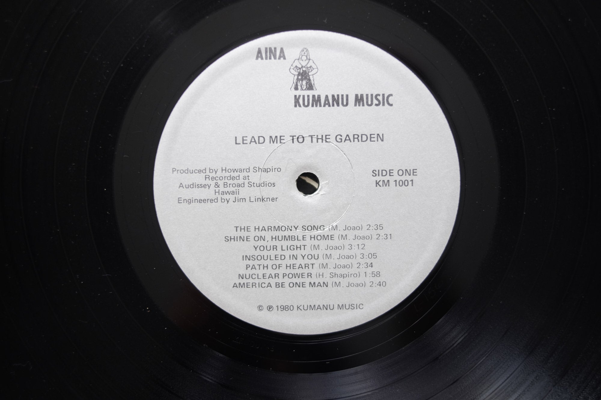 Aina-Lead-Me-To-The-Garden-LP
