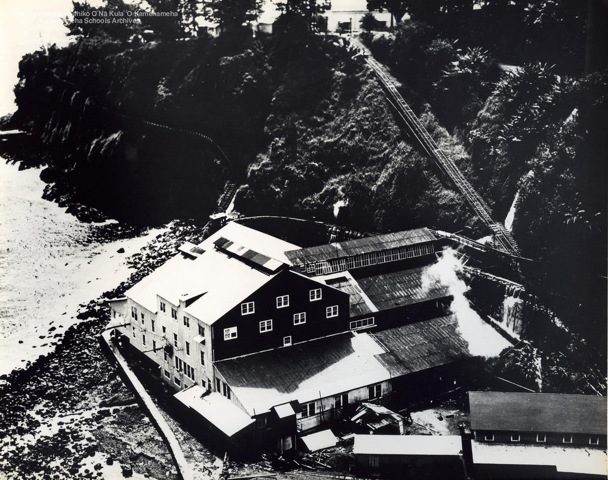 The Hakalau Sugar Mill on the Hamakua Coast, 1915.