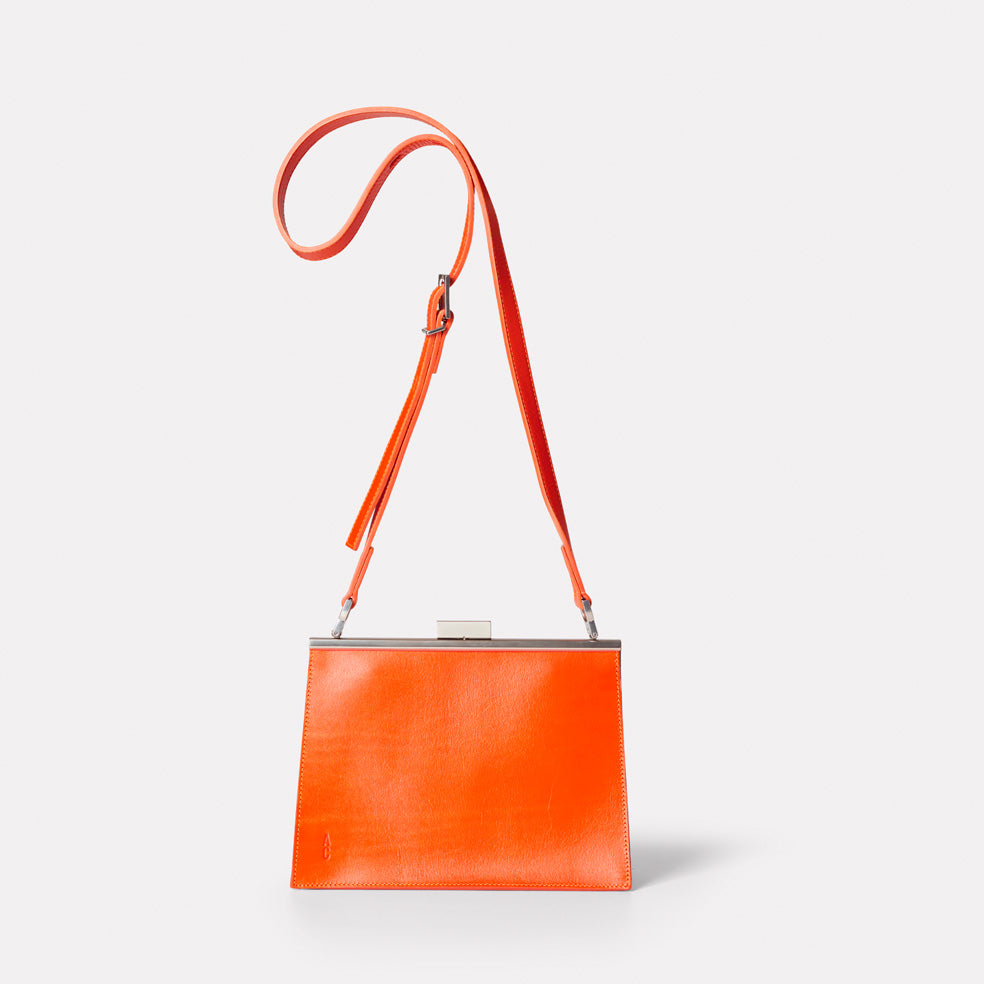 Branca Leather Crossbody Frame Bag In Flame