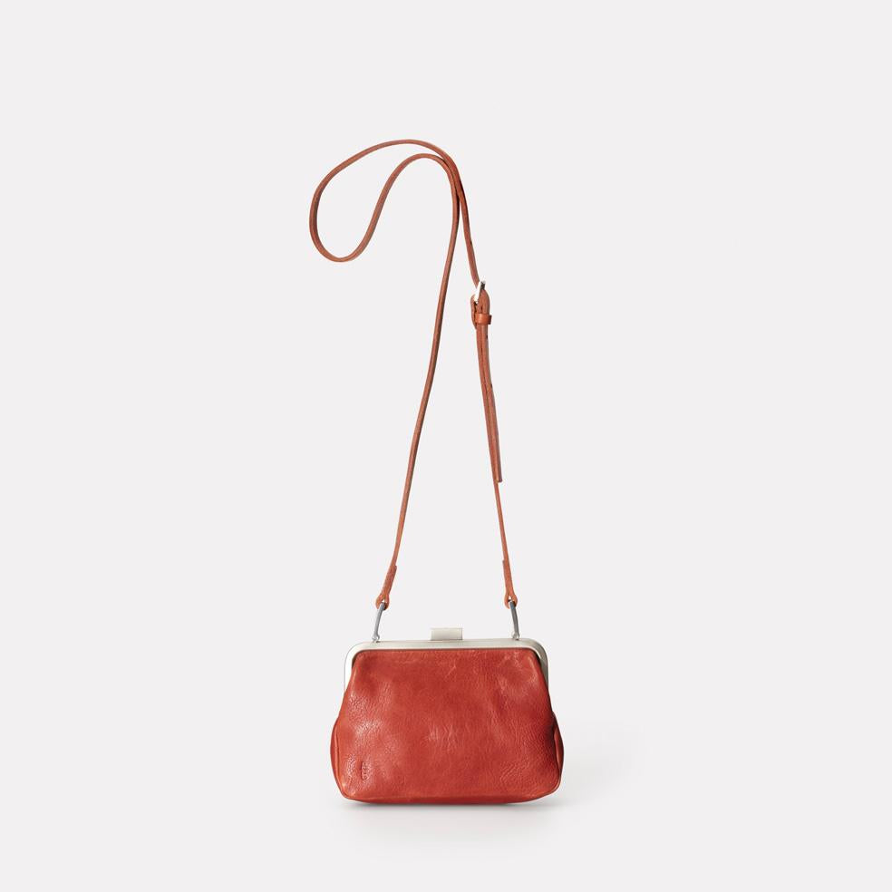 Dusty Calvert Leather Mini Frame Bag in Brandy