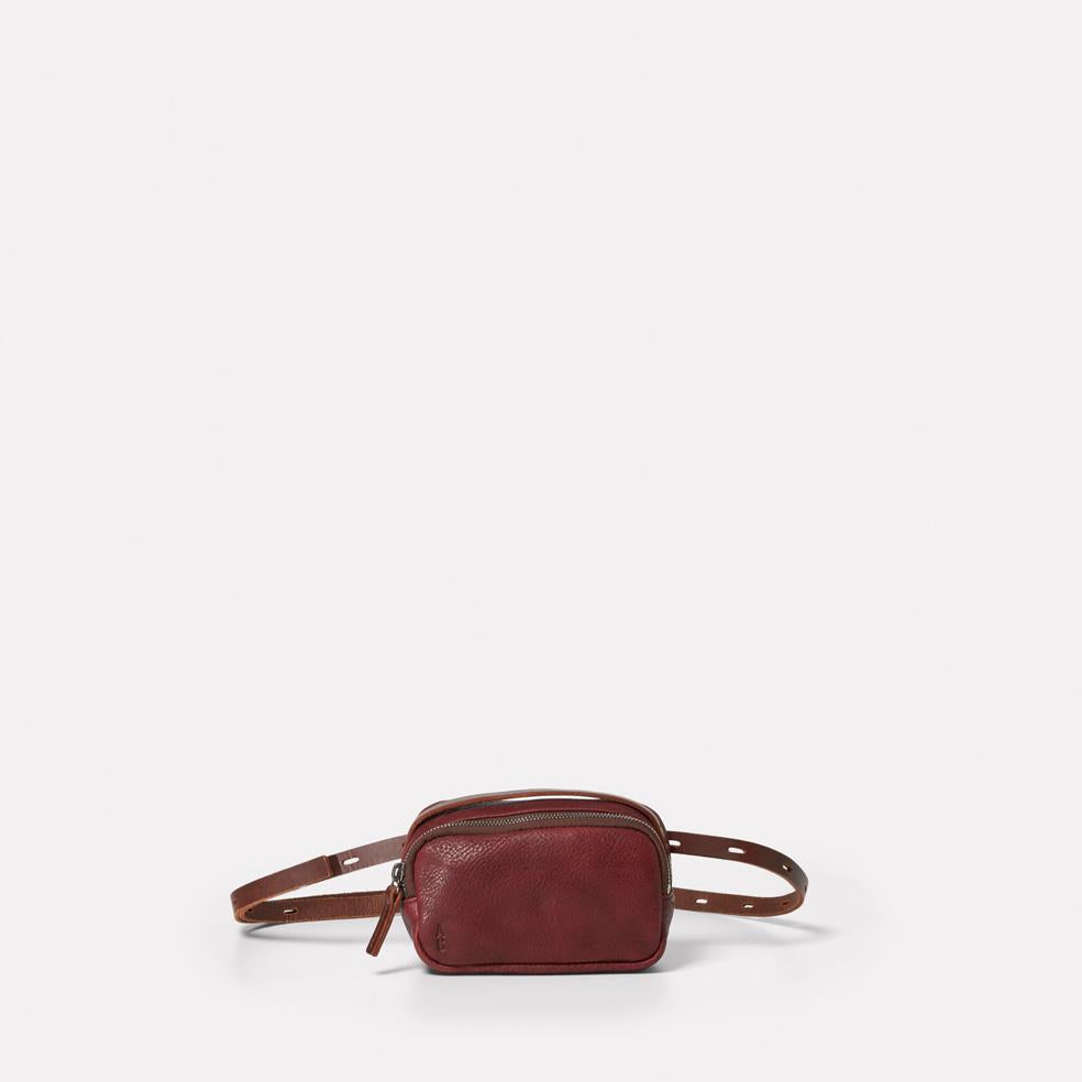 Leila Tiny Calvert Leather Crossbody Bag in Plum