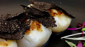 RECIPES - Seared diver scallops, hazelnut cream and black truffle
