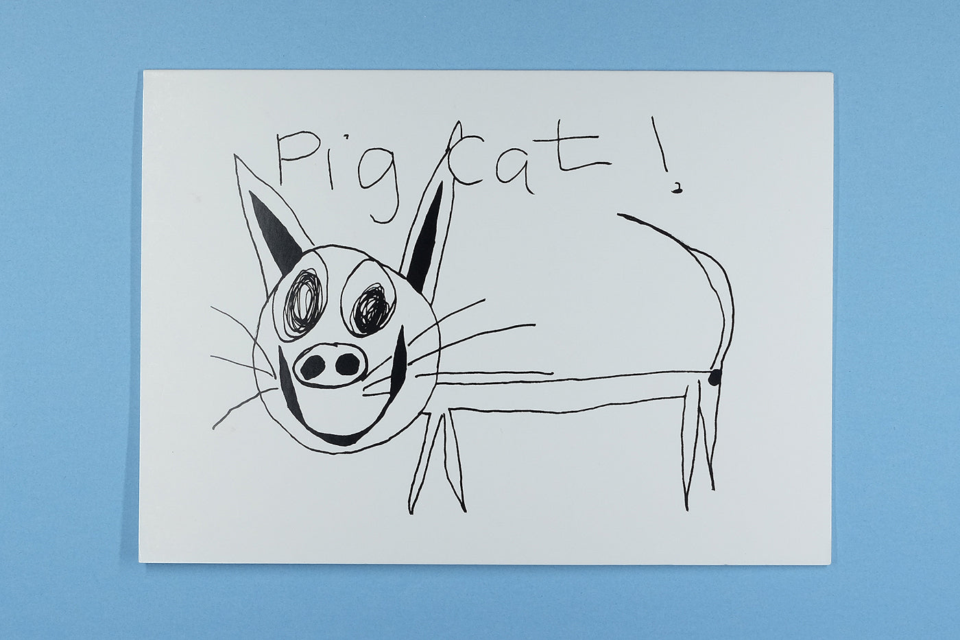 Blank Occasion Card Pig Cat