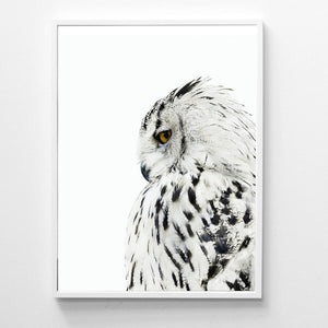 Scandinavian Animal Owl Realistic Painting Canvas Art Print Wall Picture , Owl Poster Canvas Painting Modern Wall Art Decor