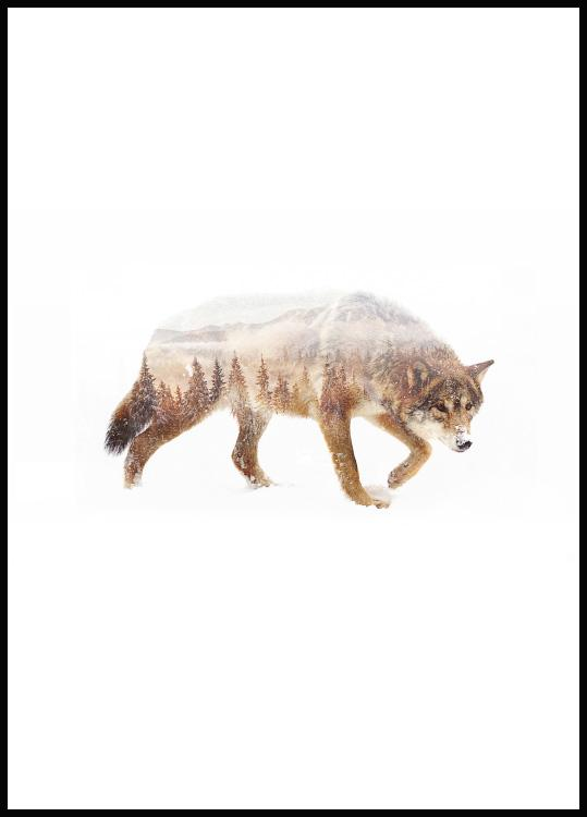 Wolf nature poster in black wooden frame