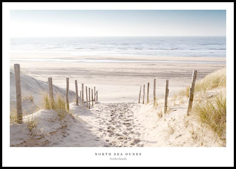 north sea dunes sand beach poster