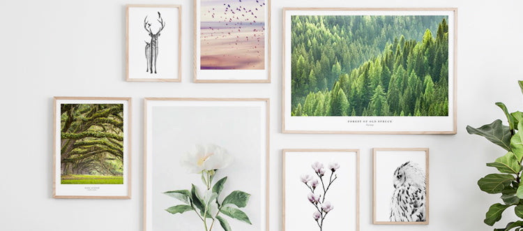 Nature posters