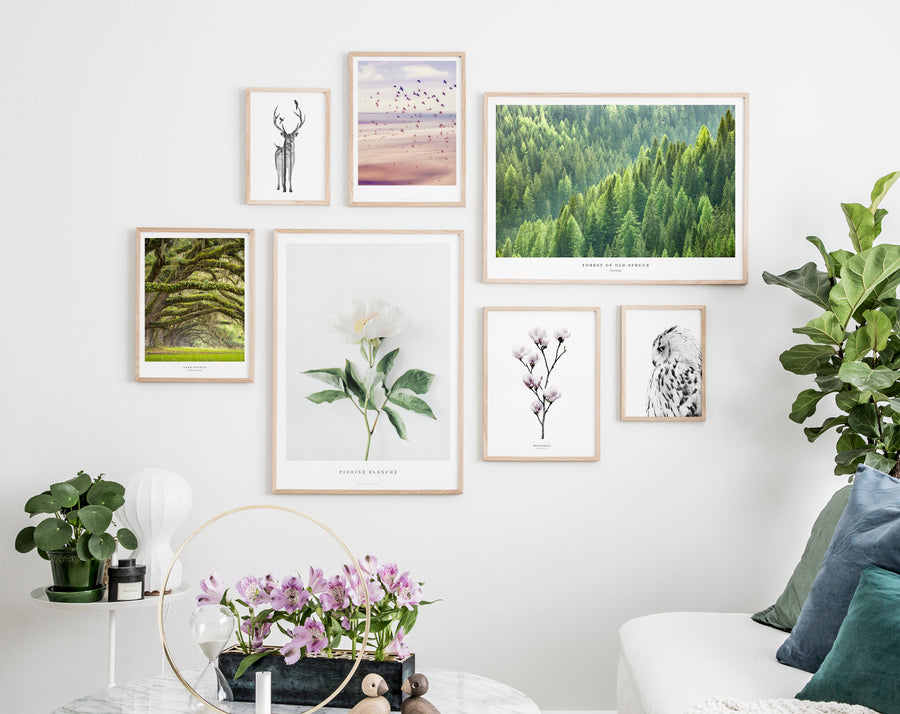 Beautiful gallery wall with nature inspired posters in oak frames