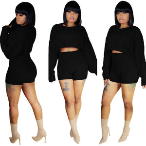 Two Piece Knitted Crop Top & High Waist Shorts Set