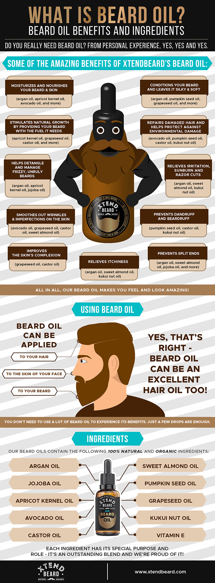 What is Beard Oil? Infographic