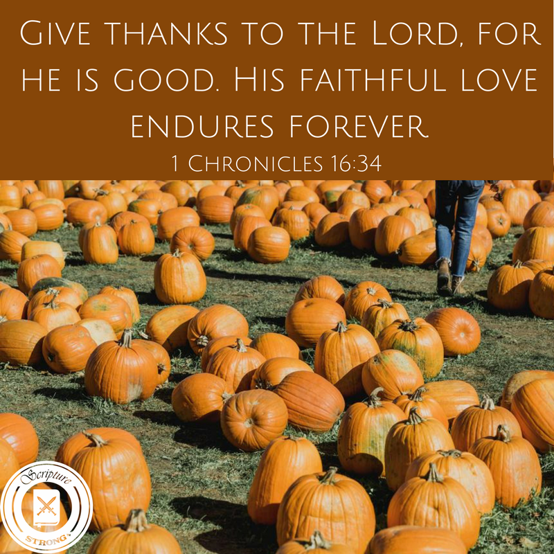 Have You Given Thanks Today?