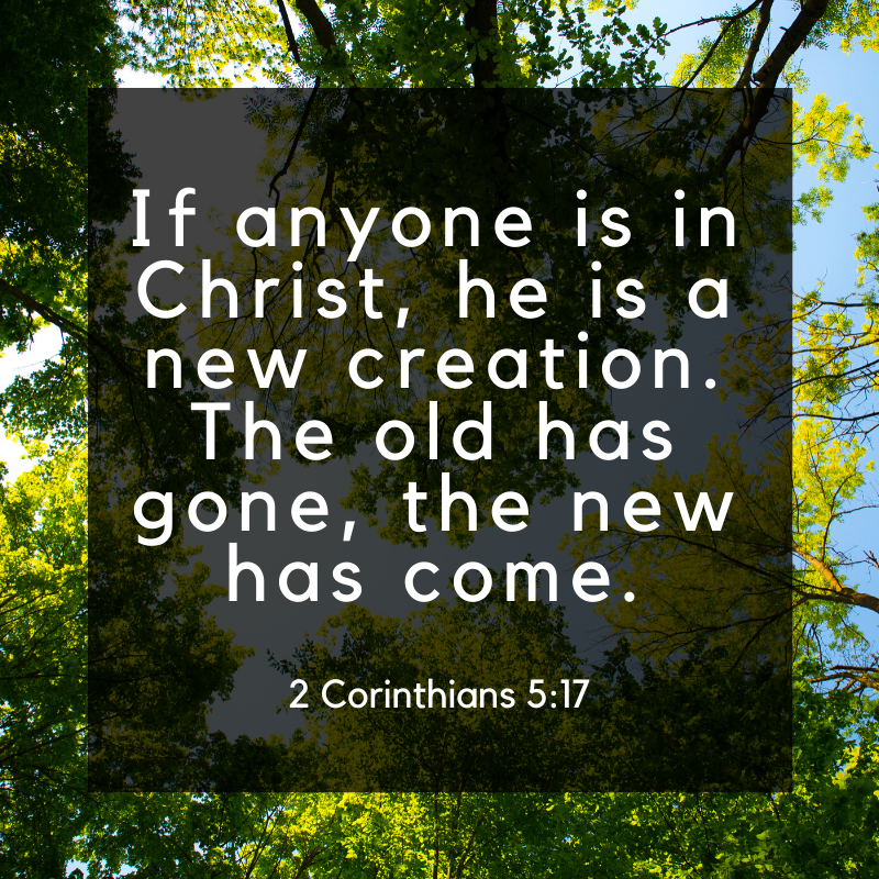 You Are New In Christ