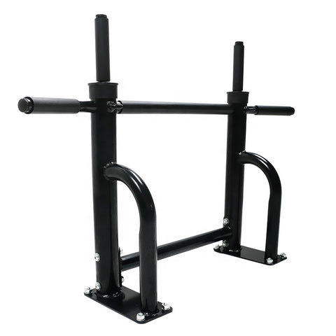 TWM Wall Mounted Dip Bar