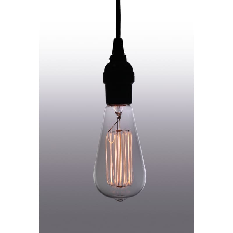Warehouse of Tiffany's Suspended Edison Light LD4001A