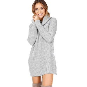 Casual Long Sleeve Turtleneck Jumper Dress