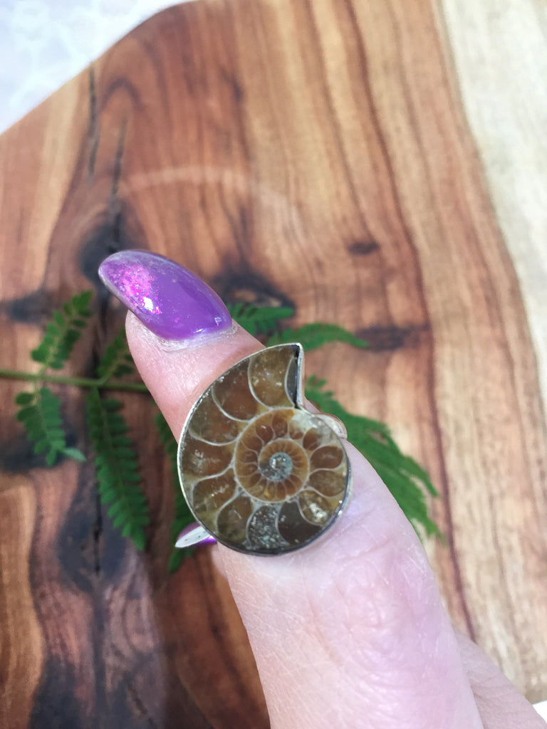 Ammonite Fossil Ring Size 7.25 - O
