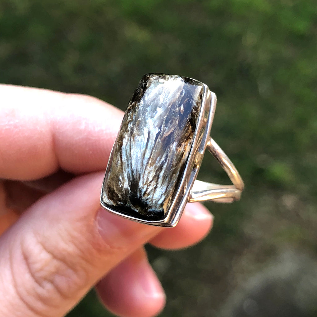 Black Serephinite Sterling Silver Ring 8.75 (R)