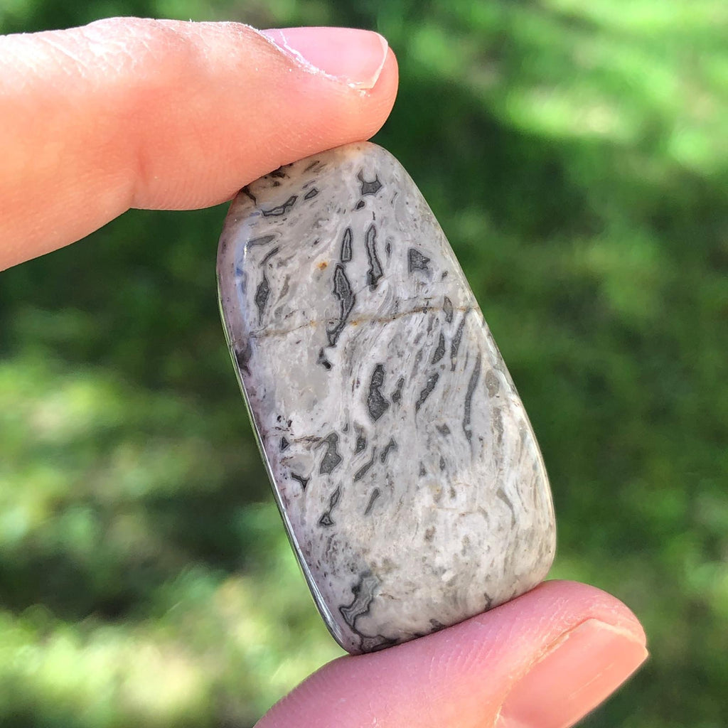 Grey Lace Agate Large Tumblestone