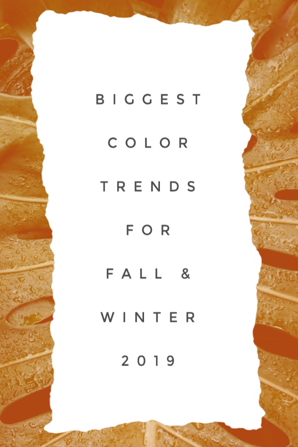 Biggest Color Trends for Fall & Winter 2019