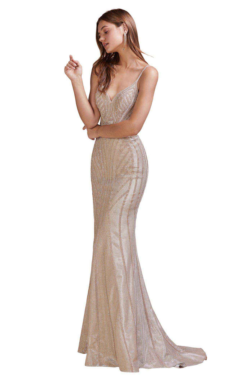 Andrea And Leo A0646 Dress