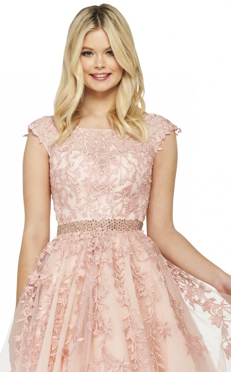 Sherri Hill 53356 Dress Blush