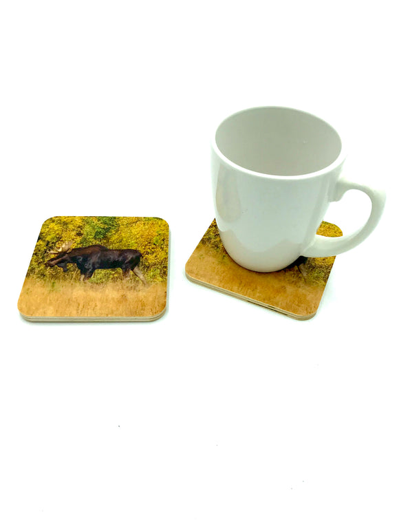 Coaster-Bull Moose wood photo coaster